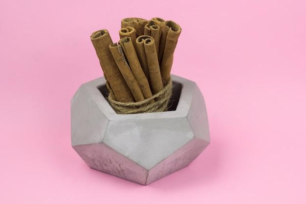 Paquete de palitos de canela en jarrón de hormigón gris fondo rosa