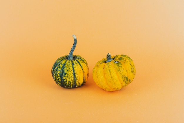 Un par de calabazas pequeñas sobre fondo amarillo