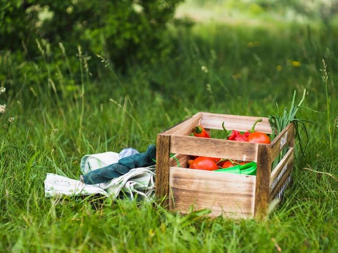 Par de guantes y caja de verduras en la hierba verde