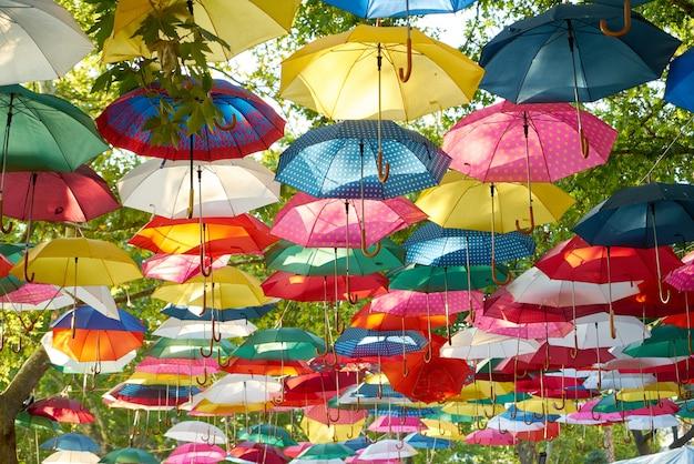 Paraguas de colores colgando de árboles