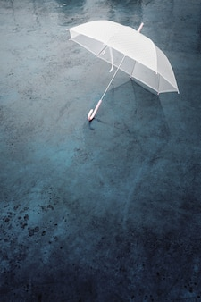 Paraguas en día lluvioso.