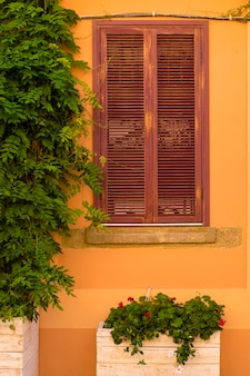 Pared color crema con ventana y flores.