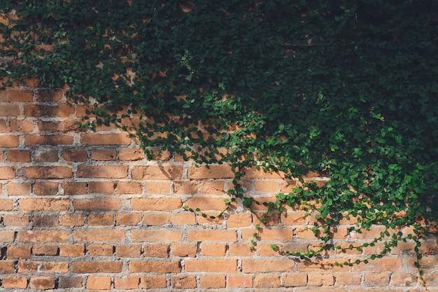 La pared está hecha de ladrillo y luego pintada en blanco.