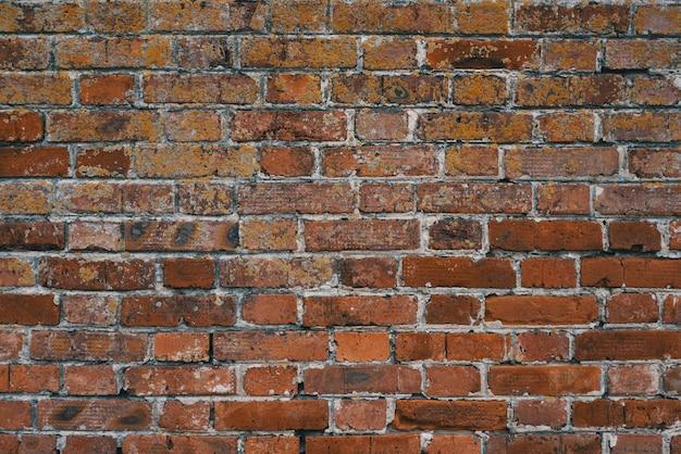 La pared está hecha de viejos ladrillos naranjas, la mampostería es desigual