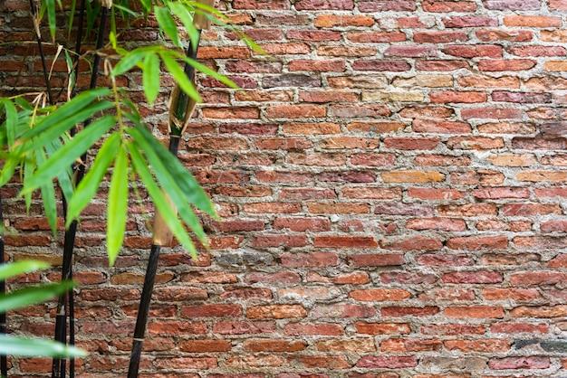 Pared de ladrillo rojo con desenfoque de hojas de bambú