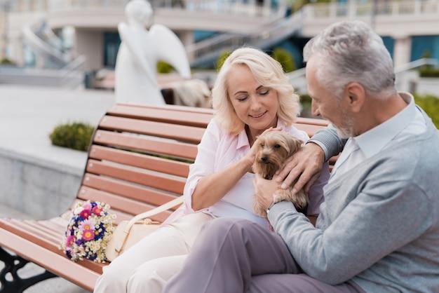 Una pareja de ancianos camina en la plaza con su perrito.