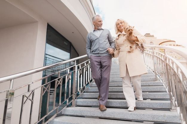 Una pareja de ancianos está caminando. una mujer tiene un perro en sus brazos.