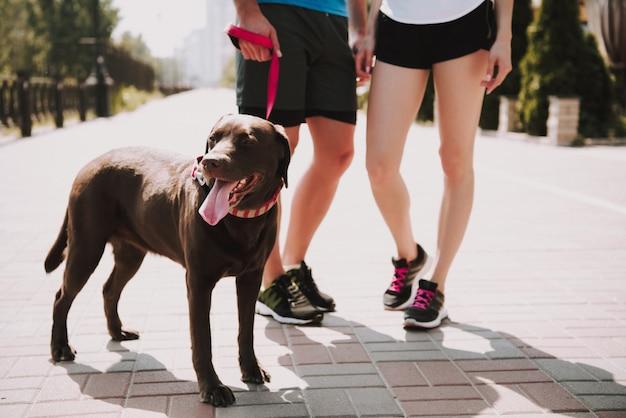 Pareja de atletas con perro en el paseo de la ciudad