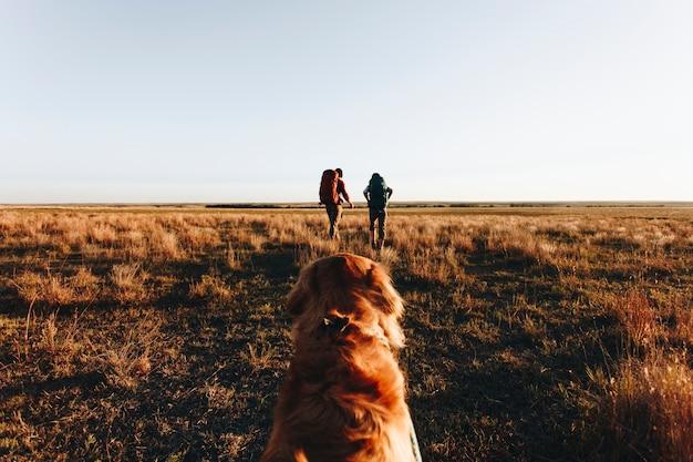 Pareja caminando juntos en el desierto