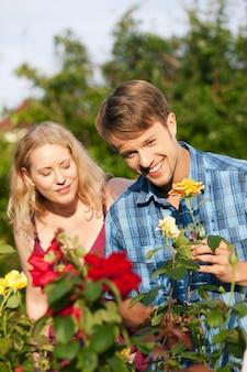Pareja haciendo trabajo de jardín en la cama de flores en un día bellamente soleado