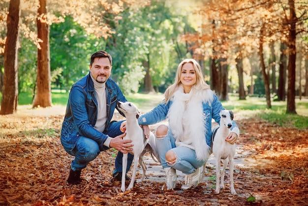Pareja joven mujer y hombre en ropa de mezclilla caminando con dos perros whippet al aire libre en otoño