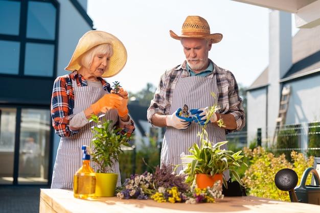 Pareja. pareja trabajadora decidida que se siente motivada mientras cuida las plantas y flores