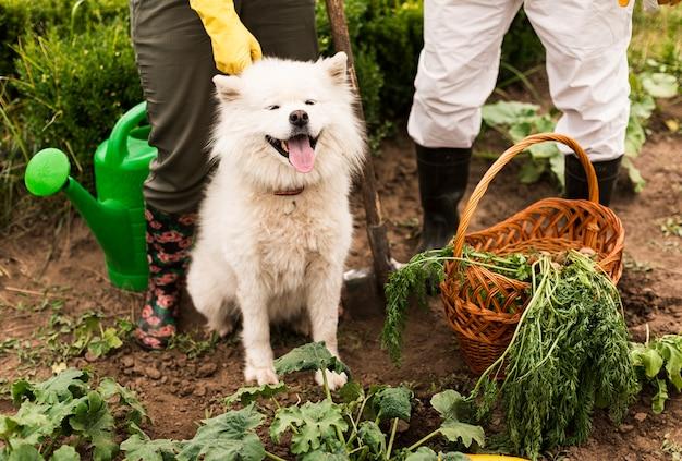 Pareja de primer plano con perro en jardín