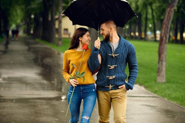 Pareja romántica con paraguas caminando en el parque de verano en día lluvioso. hombre y mujer con rosa en sendero bajo la lluvia, clima húmedo en el callejón