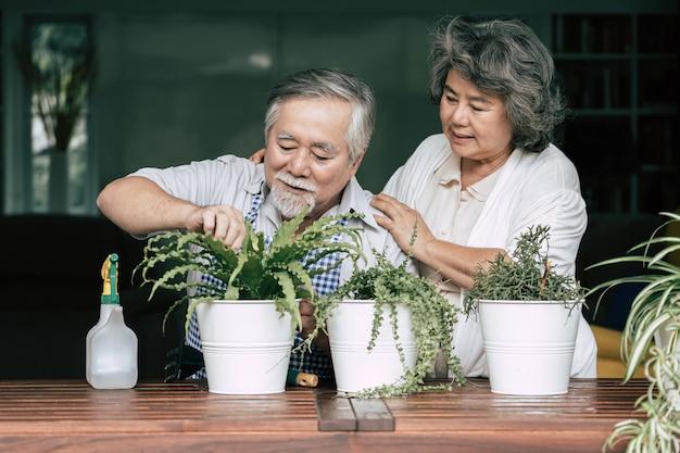 Parejas mayores hablando juntos y plantar árboles en macetas.