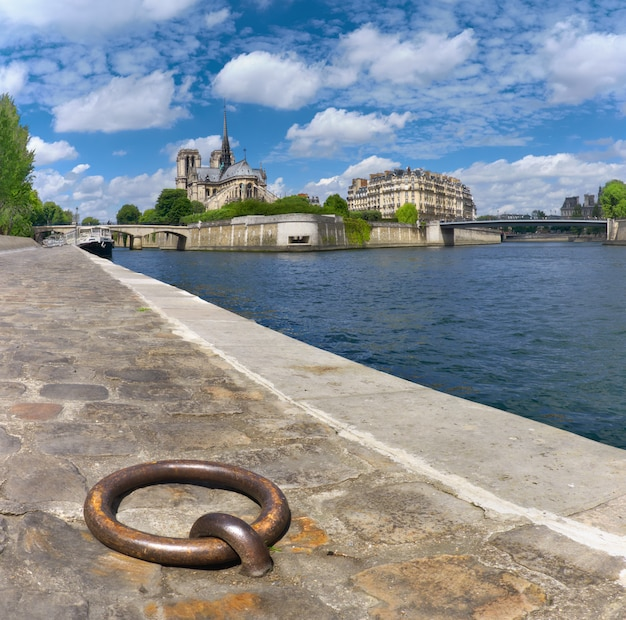 París, orilla sur del río sena con la catedral de notre-dame en primavera