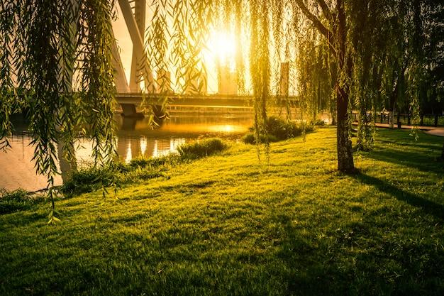 Parque en china