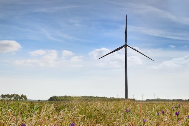 Parque eólico de turbinas. fuente de energía alternativa.