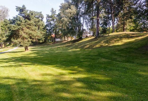 Un parque forestal con grandes árboles.