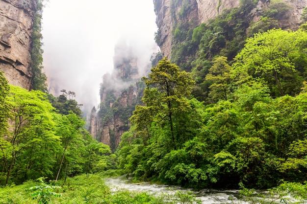 Parque forestal nacional de zhangjiajie. increíble paisaje natural con una corriente de látigo dorado y pilares de piedra montañas de cuarzo en niebla y nubes