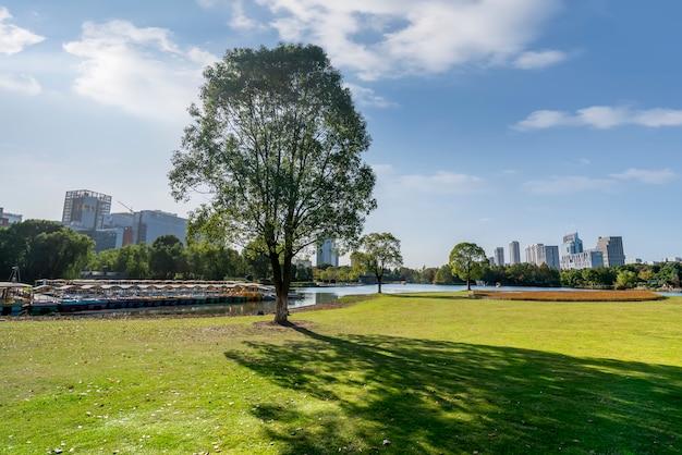 Parque forestal y paisaje de arquitectura urbana de ningbo