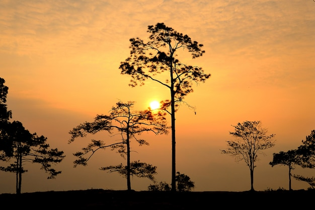 Parque nacional phu kradueng