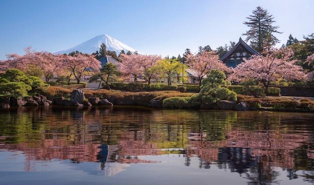 Parque sakura y pueblo con fondo de montaña fuji