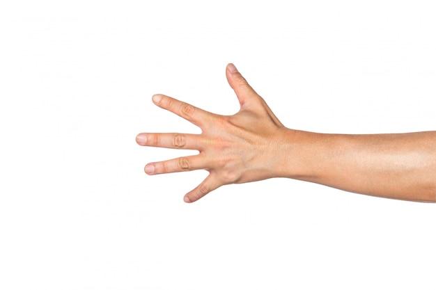 Parte posterior del brazo de un hombre que se extiende con la palma abierta y todos los dedos apuntando hacia afuera