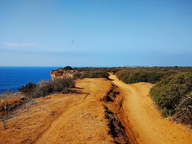 Pasarela de arena junto a los arbustos que conducen a un acantilado junto a una playa en cádiz, españa.