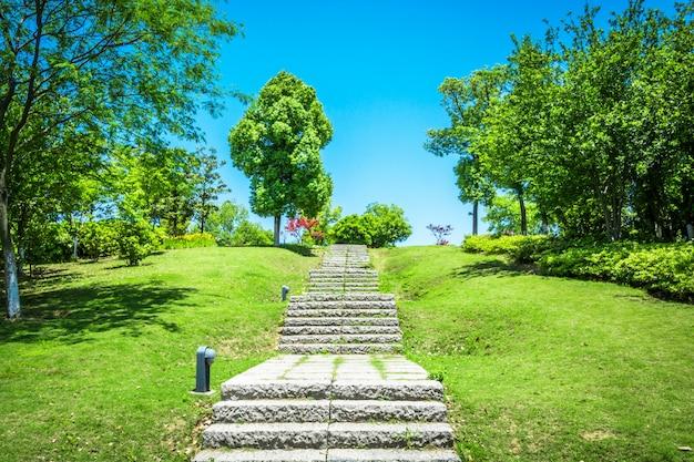 Pasarela, jardín, bangkok, tailandia