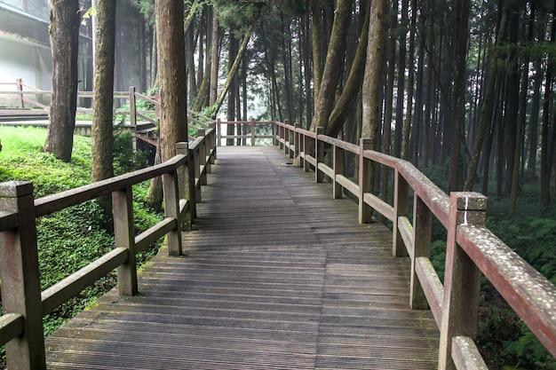 La pasarela de madera en el parque nacional de alishan en taiwán