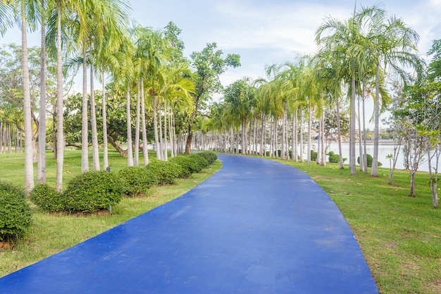 Pasarela en el parque. paisaje con pista para correr en el parque verde