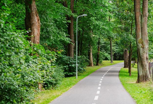 Pasarela para peatones y ciclistas en el parque de la ciudad.
