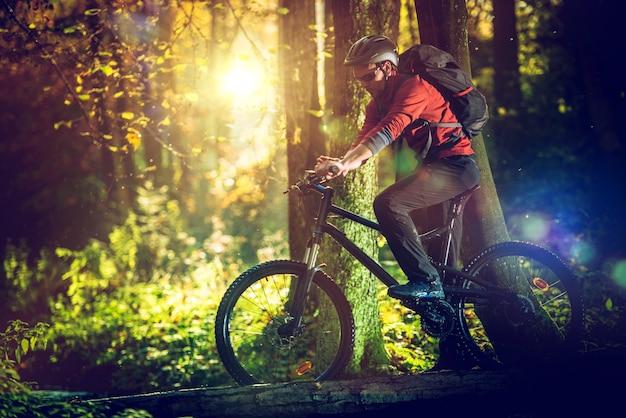 Paseo en bicicleta en el bosque escénico