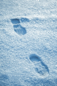 Pasos calientes en nieve fría