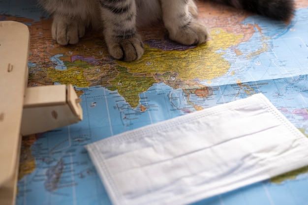 Patas de gato y mapa del mundo.
