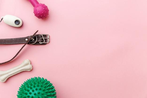 Patas de perro, juguetes y accesorios para jugar y entrenar.