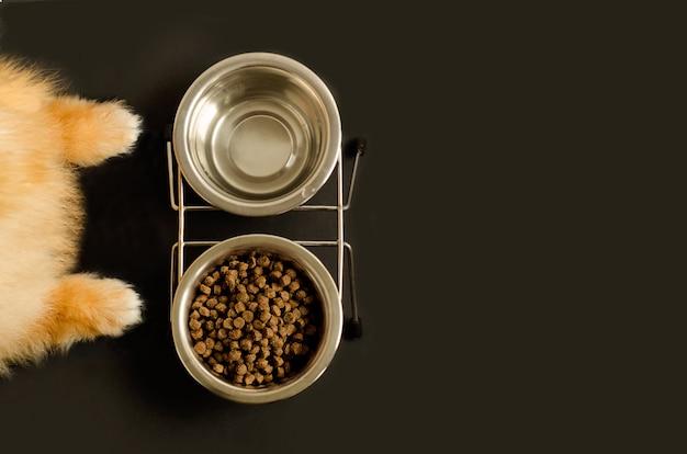 Patas de perro o gato y cuenco con comida seca y agua.