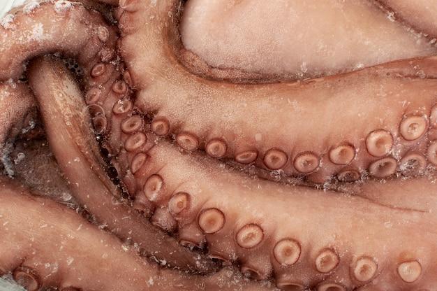 Patas de pulpo enteras congeladas o tentáculos grandes. primer plano de textura de mariscos crudos helados, calamares, calamares o sepia