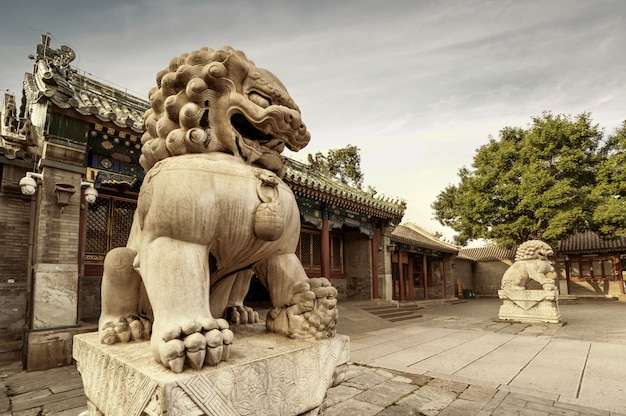 Patio de beijing en la dinastía qing