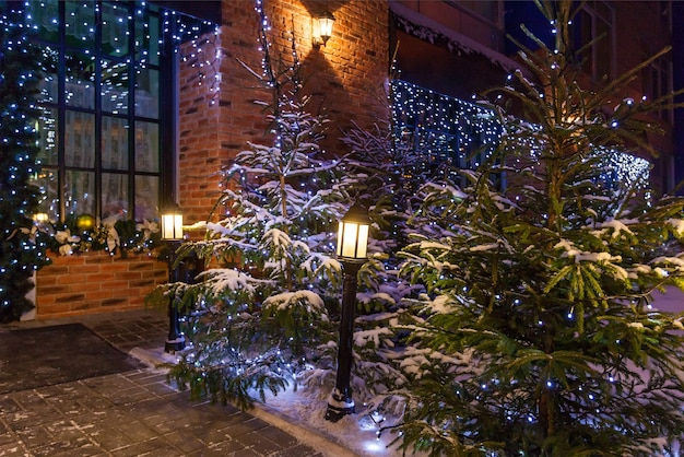Patio de navidad con árboles de navidad naturales decorados con guirnaldas azules y farolas cerca