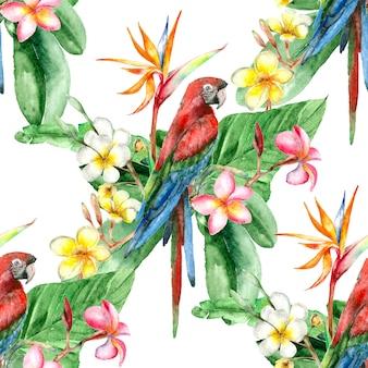 Patrón de acuarela de aves tropicales