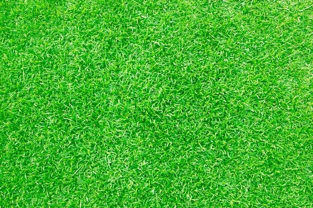 Patrón de césped verde con textura de fondo.