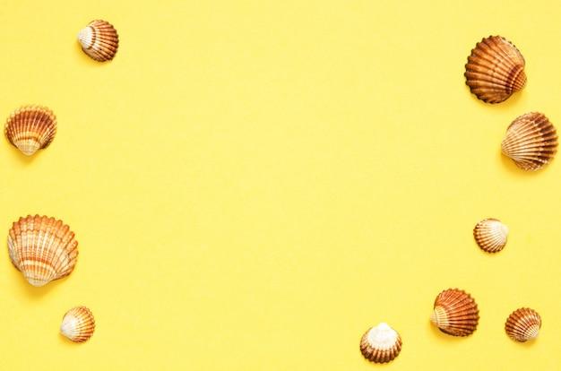 Patrón de conchas de mar sobre fondo de papel amarillo. concepto de verano
