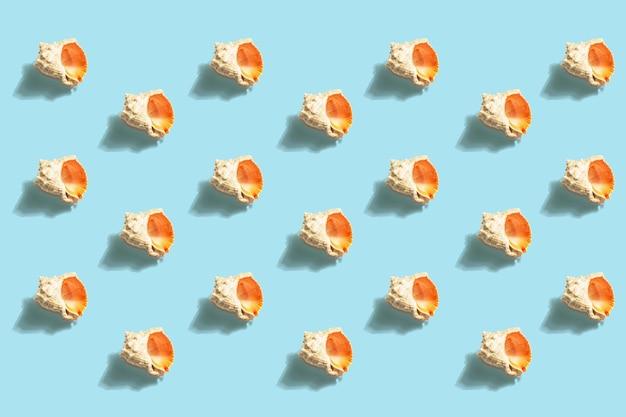 Patrón de conchas marinas en la náutica azul. concepto de vacaciones, tarjeta de mar.
