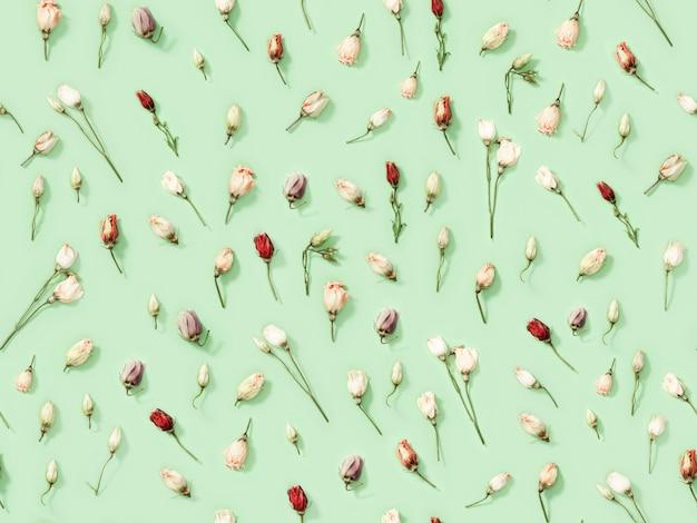 Patrón creativo regular sin costuras de flores secas naturales eustoma en verde suave.