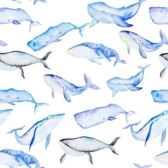 Patrón sin fisuras de ballenas acuarela