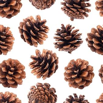 Patrón sin fisuras de conos de pino