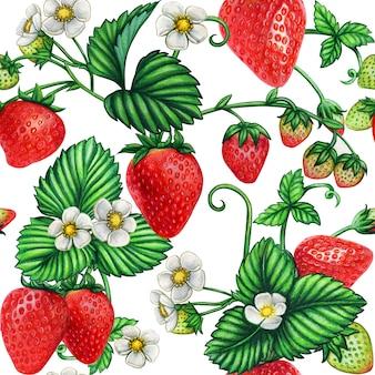 Patrón sin fisuras grande de fresas acuarela