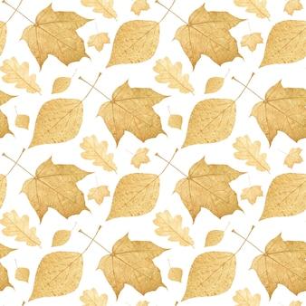 Patrón sin fisuras de hojas de colores aisladas sobre fondo blanco